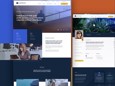 CAPTRUST Website Design motion design ux branding ui web mobile design edgy modular flat design minimal website animation