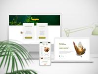 Diseño de Campaña de Reforestación