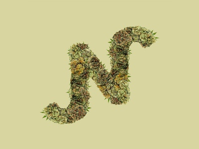 N Greens brand logo greens natural organic typography plants