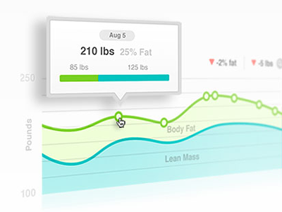 Aria Weight Graphs data vis fitbit graphs charts