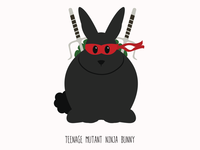 Teenage Mutant Ninja Bunny