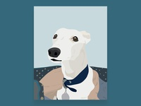 Whippet Illustration - Bailey