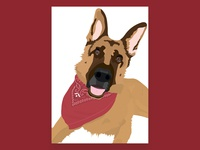 German Shepherd Illustration - Shelby