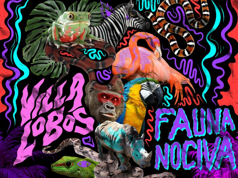 Fauna Nociva zebra parrot frog snake flamingo gorilla photoshop ai animal design digital character vector méxico illustration