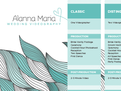 Alanna Maria CD insert  videography weddings blue price packages pattern