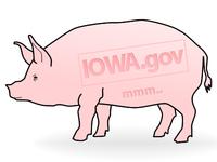 Havin' Fun with Iowa