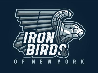 Iron Birds of New York
