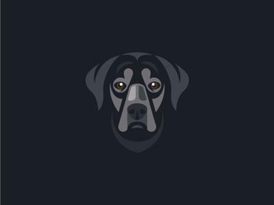 My dog's portrait
