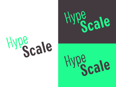 Hype Scale | Week 4 hype scale logo design logo identity graphic design typehue brandom challenge branding