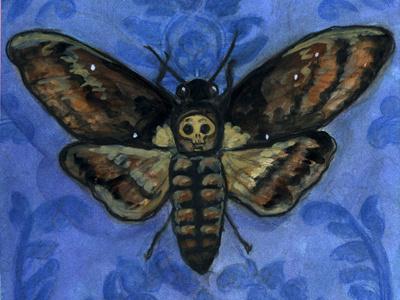 A Victorian Deaths-Head victorian watercolor illustration deaths-head moth moth