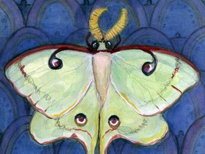 Deco Luna moth art moth watercolor illustration luna moth