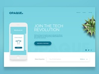 Opaque Landing Page.