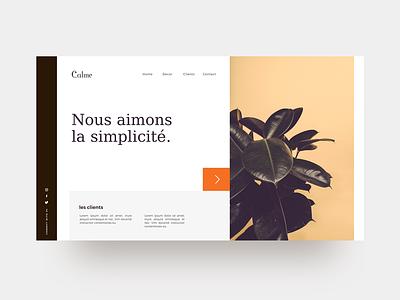 Calme : Free Web UI Concept. kit design ui minimal freebie sketch interface uiux webdesign