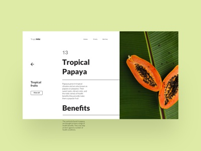 01 Daily layout explorations: TropicWiki cleandesign layout landingpage uidesign concept uiux ui minimalist