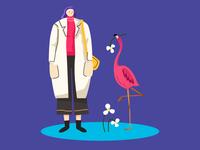 Flamingo's flower