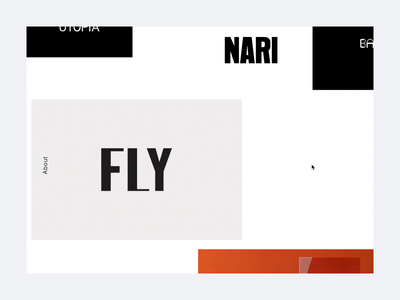 NARI project hover detail animation ux ui web damn fine