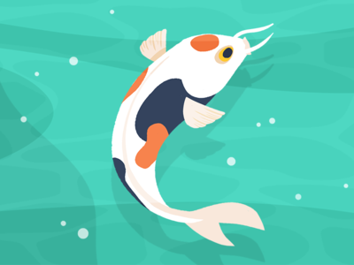Koi japanese japan koi design character 2d animation 2d animation