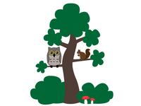 Owl and sqirrel
