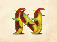 The concept of the letter N