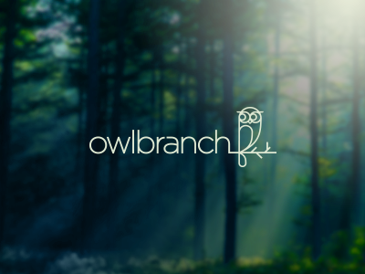 Owlbranch Logo Design owl logo forest animal nature branch kids design education bird children minimal