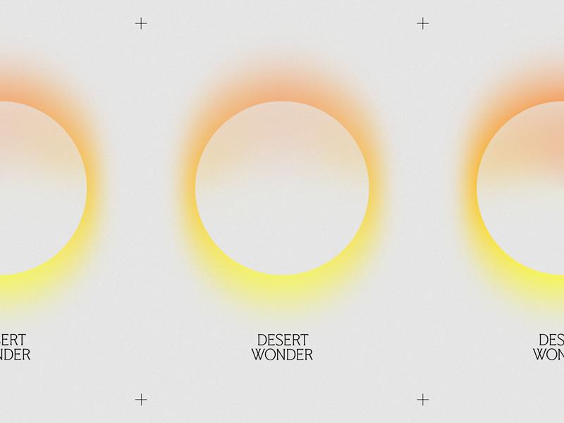 Desert Wonder color monogram wordmark identity poster music band