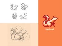 Squirrel Illustration Based on Circular Guides
