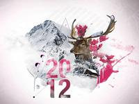 New Year 2012