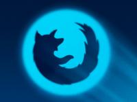 Bat Fox