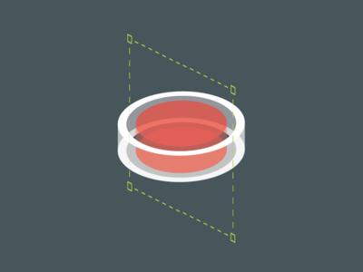 Signature element: Camtasia recorder button