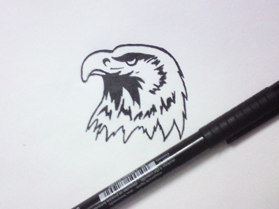 Eagle hossein yektapour 1ta logo mark drawing eagle
