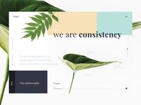 Logic — Creative Studio / Exploration
