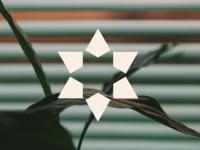 enarmonia & co — Symbol