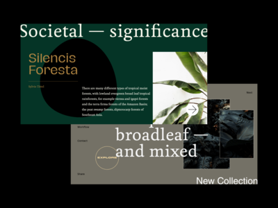 Societal Forest Exploration 🌳