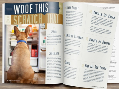 Article Layout Design For Pupculture Magazine k9 magazine pet business pet industry pup pupculture canine magazine publication design pets dog