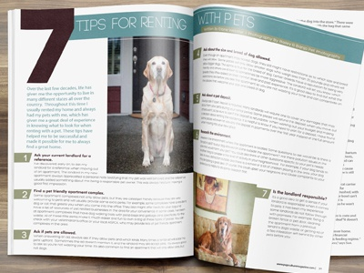 Article Layout Design For Pupculture Magazine4 pet design publication design layout design pup canine culture dog magazine labrador pets