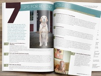 Article Layout Design For Pupculture Magazine4