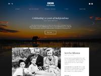 Brand botswana homepage desktop