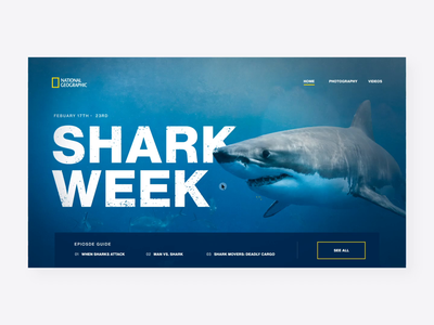 Nat Geo | Shark Week 🦈 depth of field shark week sharkweek national geographic natgeo parralax interaction motion motion graphics after effects website animation interface ux ui