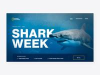 Nat Geo | Shark Week 🦈 depth of field shark week sharkweek national geographic natgeo parralax interaction motion motion graphics after effects website animation interface ux ui