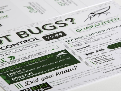 Texas Pest Pro flyer graphic design infographic