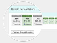 Domain Buying Options