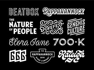 2016 Branding Recap north carolina washington dc raleigh durham dove lettering seal badge type typography logo branding