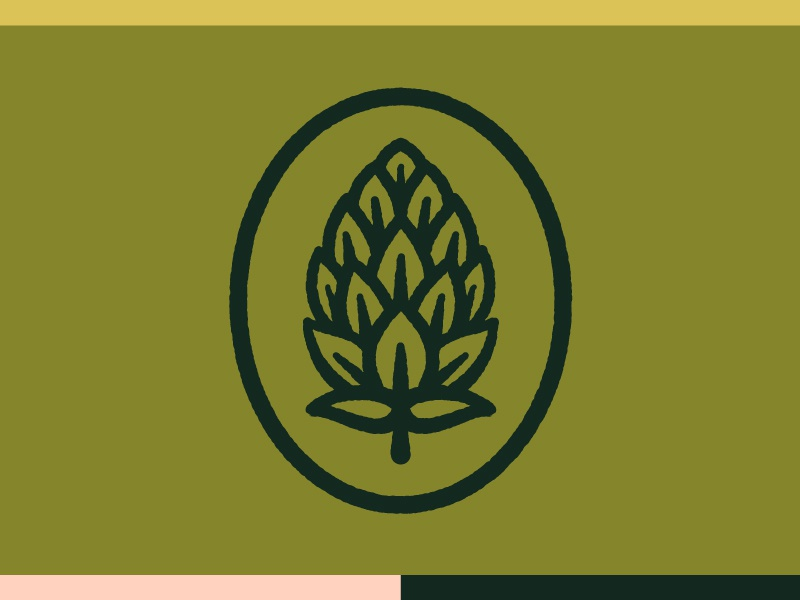 Hop Icon and Color food and beverage drink color texture nature logo beer branding nature icon washington dc beer garden beer hop