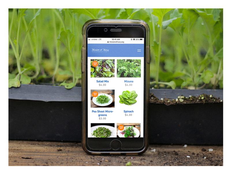 Mission of Mary - Mobile Store ui layout webdesign urban farm ecommerce