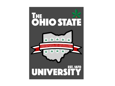 Ohio State iPad Design the ohio state university 1870 football nut buckeye gray grey scarlet state ohio ohio state osu