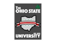 Ohio State iPad Design