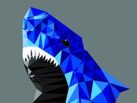 Shark2 05 72ppi 800x1701