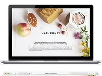 Naturoney / Landing Page