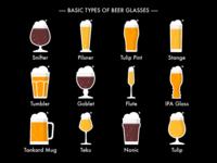 Basic Types Of Beer Glasses