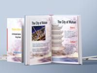 Information Guide Design